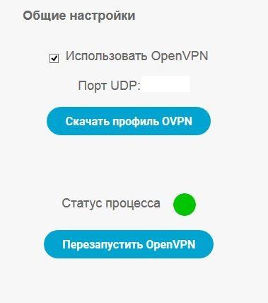 openvpn_restart.JPG